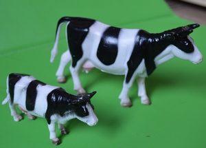 кто как говорит, коровы, kto kak govorit, korovy