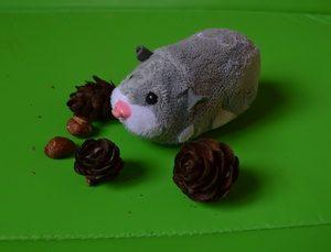 стих про мышку, stix pro myshku, огородная история, ogorodnaya istoriya
