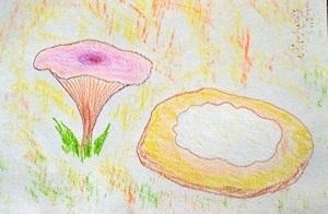 lesnoe-boloto,лесное болото