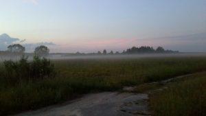 """Детские стихи о тумане """"Я не знаю точно - как в тумане"""""""