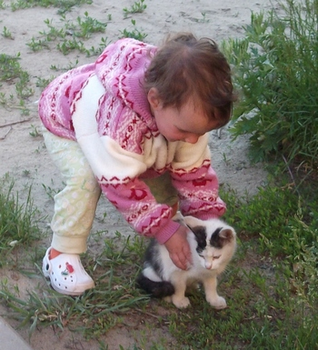 стихи про домашних животных «Говорит коровка «Му». Про котика
