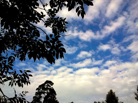 Детские стихи о небе «Что поделаешь, мама, лечу!». Милые стишки, призывающие почаще смотреть на небо. Небушко