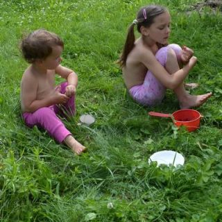 Забавные стихи про ягоды для детей. Про клубничку, малину, ежевику и смородину