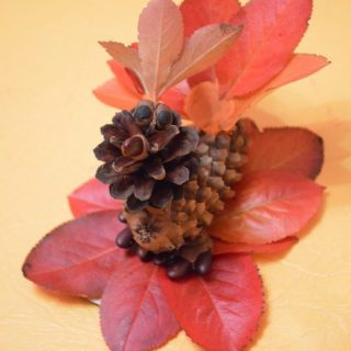Детские поделки из шишек и листьев. Птицы из шишек. Жар-птица из шишек, листьев и пластилина. Птица 1