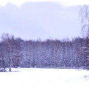 Забавные детские стишки про снег, зиму, сахар и зимние рецепты. «Снежное варенье». Снежное поле в снежной рамке