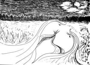 """Ночь, поле, трава, любовь, картинка черно-белая - иллюстрация к стихотворению """"Стих осенний ветер"""""""
