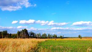 Осеннее настроение - фото-иллюстрация к осенним стихам