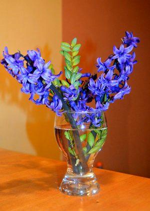 синие цветы в прозрачном бокале