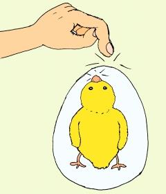 цыплёнок в яйце карточка chick