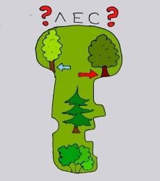 tree как запомнить английские слова