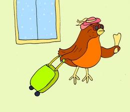 bird английские каротчки для запоминания