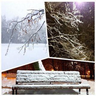 московский снегопад фото