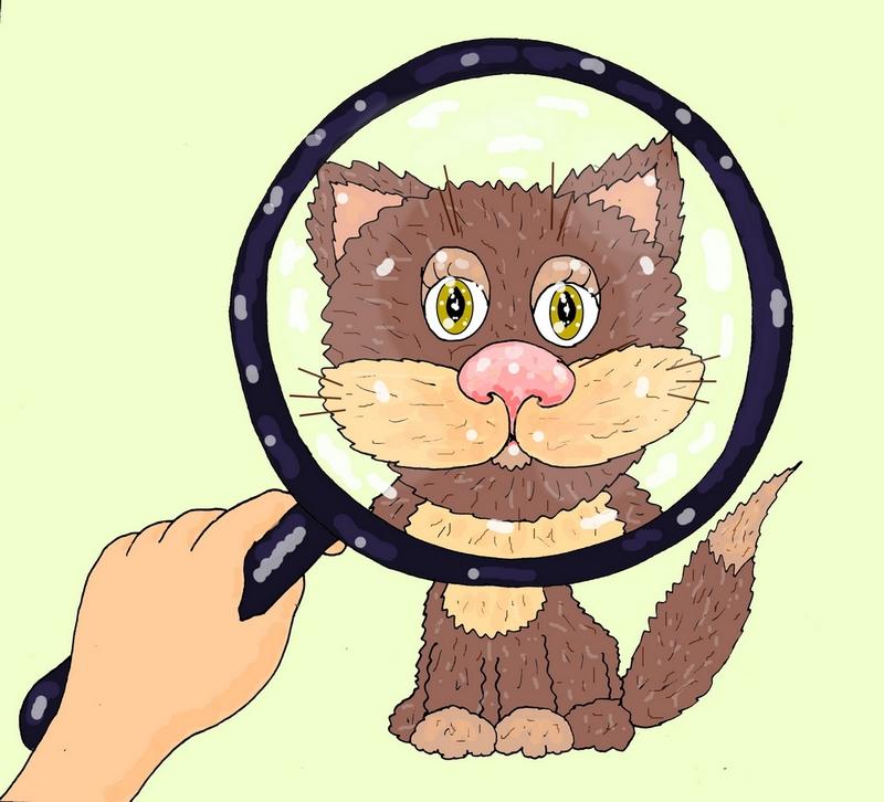 """Код под лупой иллюстрация к авторскому стихотворению """"Четырёхметровый кот"""""""