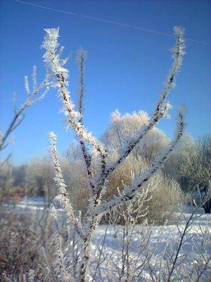 Необычная снежинка