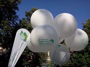 Где погулять с ребёнком в Москве. Парк Баумана или Сад культуры и отдыха имени Баумана. Территория спокойствия
