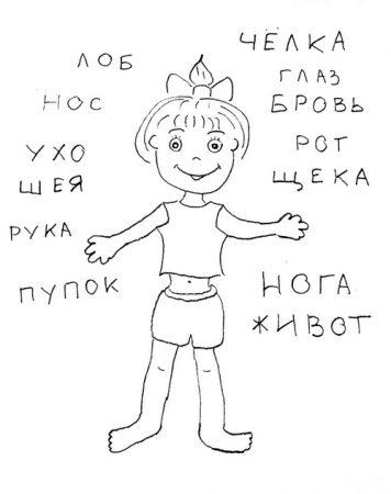 Игра соедини слова и части тела